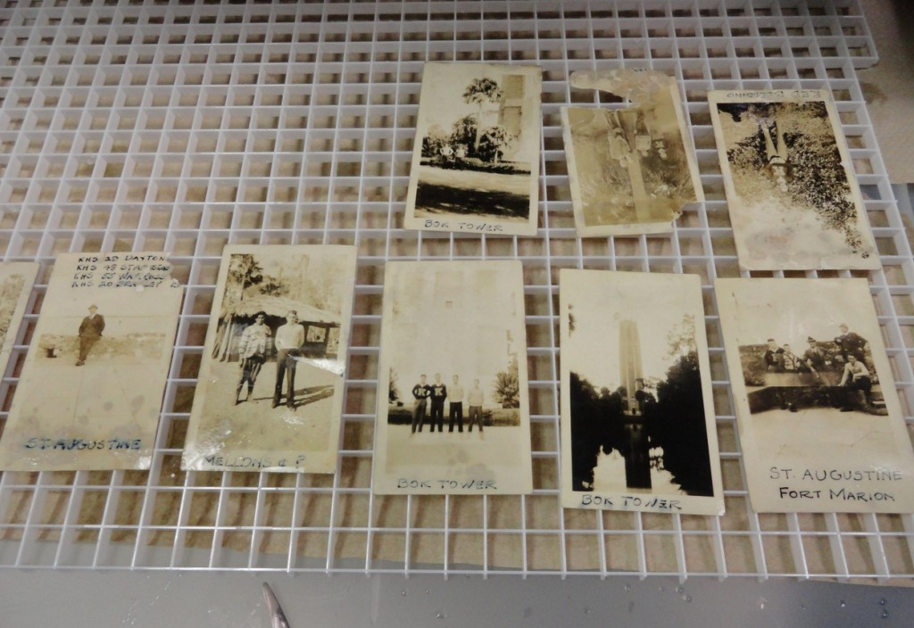 More photographs drying. Each photo was held upright, first, to let excess water run off.