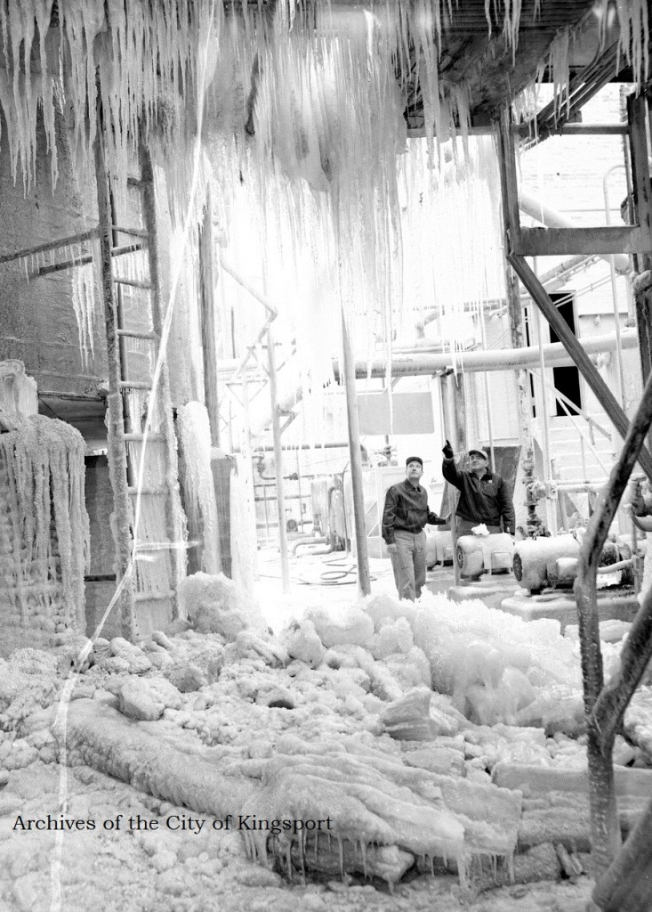 The condition of the plant after a 1958 ice storm.